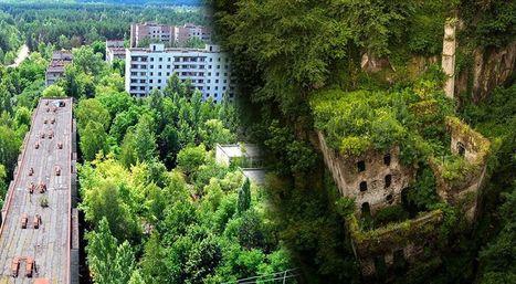 12 photos montrant la nature qui reprend ses droits | Ca m'interpelle... | Scoop.it