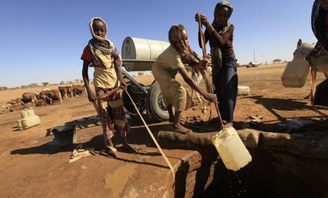 Egypt and Ethiopia Heading Toward a War Over Water | Égypt-actus | Scoop.it