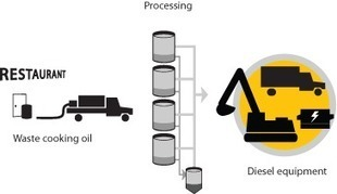 Pure Plant Oil Fuel - fossilfreefuel.com | Open source car | Scoop.it