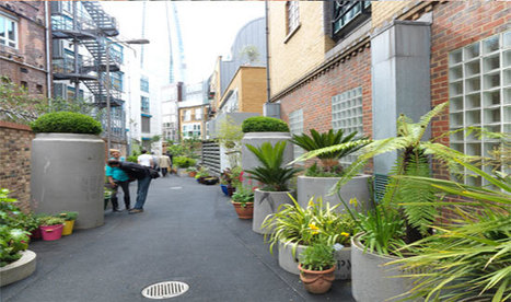 Unused Laneways Ideal for Urban Gardens | green streets | Scoop.it