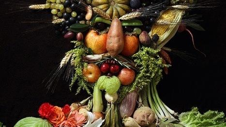 ¿Todos vegetarianos?: En 2050 el hombre y los animales se quitarán la comida de la boca   PREUNIVERSITARIO2013   Scoop.it