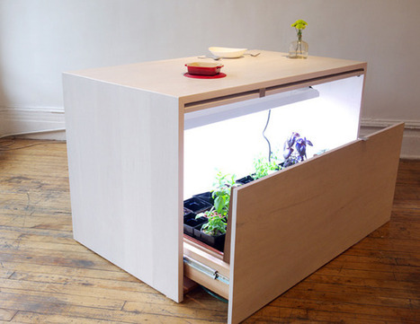Grow, Prep, and Serve at This Hydroponic Kitchen Island   Urban Gardens   Unlimited Thinking For Limited Spaces   Urban Gardens   Annie Haven   Haven Brand   Scoop.it