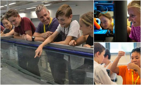 Learning Labsa holiday program for gifted and talents students - July School Holidays   Science.education   Scoop.it