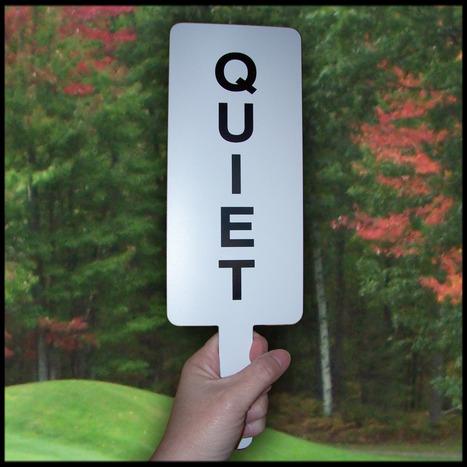 Being Quiet | Surviving Leadership Chaos | Scoop.it