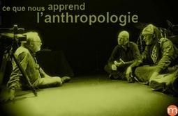[Ressource UOH] Ce que nous apprend l'anthropologie | loudoufinen | Scoop.it