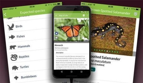 New app puts the world's biodiversity in the palm of your hand | GarryRogers Biosphere News | Scoop.it