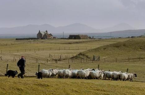 Scottish Government approves plan to dig 5,000 tonnes of sand from Hebridean island   My Scotland   Scoop.it