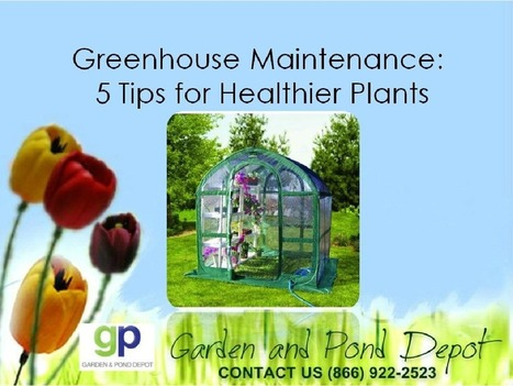 Greenhouse for Healthier Plants | Garden and Pond Depot | Scoop.it