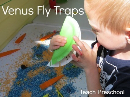 Make and play with Venus Fly Traps | Teach Preschool | Scoop.it