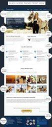 InkThemes BlackHorse : Horse Riding Club WordPress Theme | WordPress Themes Review | Scoop.it