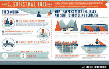 Infographic: How to Recycle Your Christmas Tree | Prionomy | Scoop.it