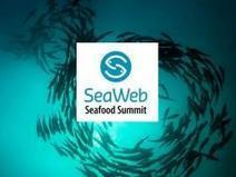 SeaWeb announces Winners of 2016 Seafood Champion Awards - Aquaculture Directory | Aquaculture Directory | Scoop.it