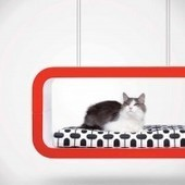 High End Forma Italia 'Suite' Pet Furniture | Inthralld | Handicraft | Scoop.it