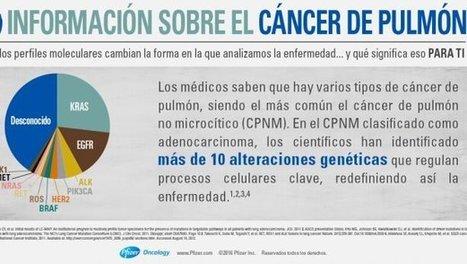 La supervivencia del cáncer de pulmón se ha incrementado un 23,5 por ciento en España - DiarioMedico.com | Dr. Josep Morera Prat - Neumólogo | Scoop.it