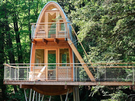 Most amazing treehouses from around the world | Sunset photo | Scoop.it