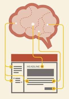 This is Your Brain on Content Marketing | Social Media, Digital Marketing | Scoop.it