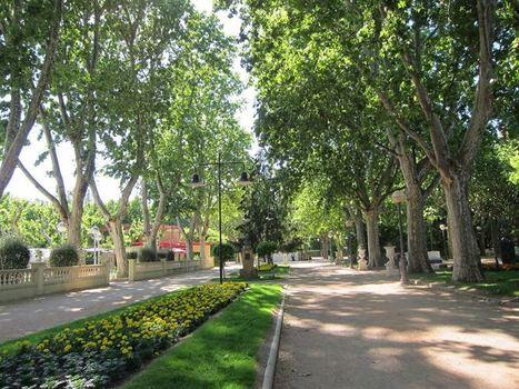 Los espacios verdes pueden aumentan el bienestar | joss amezcua | Scoop.it