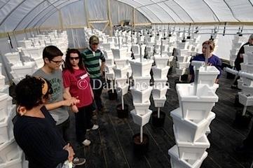 Iberia Community Garden Co-op's new hydroponic garden — City ... | Vertical Farm - Food Factory | Scoop.it