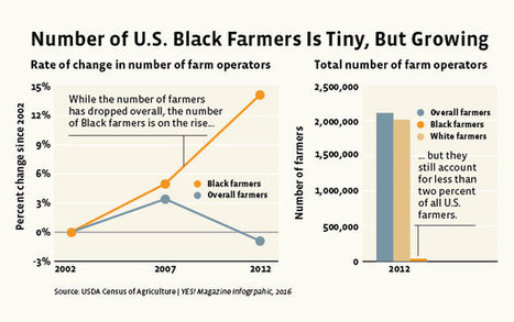 After a Century in Decline, Black Farmers Are Back and on the Rise | Permaculture, Horticulture, Homesteading, Bio-Remediation, & Green Tech | Scoop.it