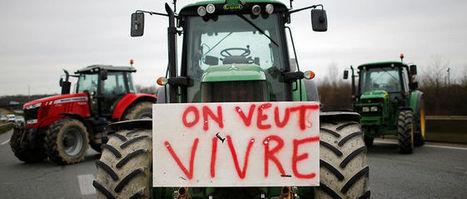 En France, un agriculteur se suicide tous les deux jours. | TRADCONSULTING 4 YOU | Scoop.it