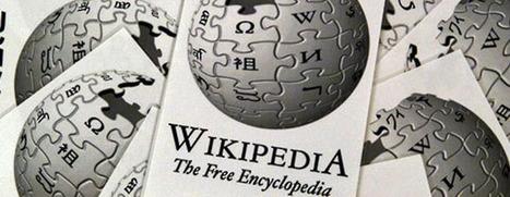 Wikipedia fue elegida como la mejor ONG.- | Large Class Assessment | Scoop.it