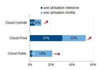 Les DSI français fans de Cloud privé et fâchés avec le Cloud public - Silicon | Solutions de sécurité Bitdefender | Scoop.it