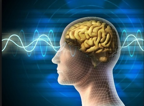 Intelligence May Stem From a Basic Algorithm in the Human Brain - The Power of Ideas | Entrepreneurship in Higher Education | Scoop.it