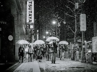Toyko Picture -- Snow Photo -- National Geographic Photo of the Day | Year 7 ACARA Resources - Geography | Scoop.it