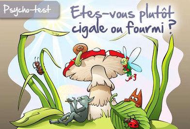 Etes-vous plutôt cigale ou fourmi ? | Tarots traditionnels | Scoop.it