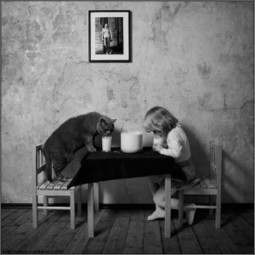A friendship between a young girl and her cat   LaPhoto   Scoop.it