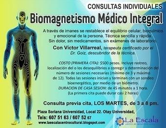 "03-01 marzo biomagnetismo consulta.jpg (400x309 pixels) | Campos magnéticos, ""BIOMAGNETISMO"" | Scoop.it"