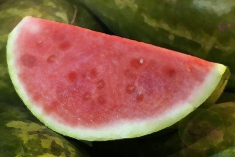 5 things you didn't know about watermelon | Technology | Scoop.it