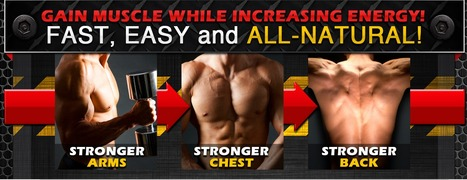 Build Muscle To Look Attractive And Masculine | Timoields layex | Scoop.it