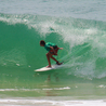 Surfer: Posting All the Web's Best of Surfing