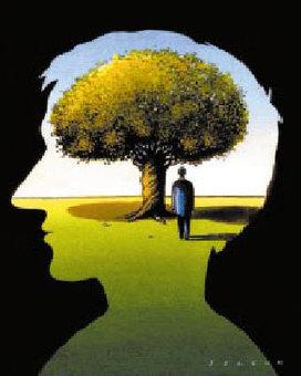 Dossier > Les mystères du cerveau | Cerveau intelligence | Scoop.it