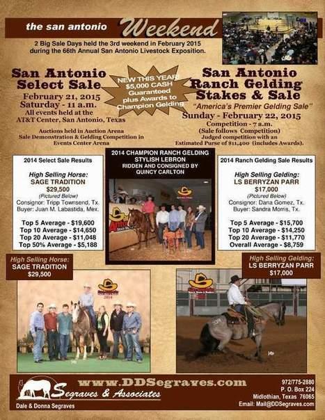 The San Antonio Weekend | Today's Horse Sense | Scoop.it