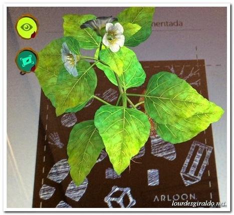 Las plantas en Realidad Aumentada con Arloon Plants - PROYECTO #GUAPPIS | iPad classroom | Scoop.it