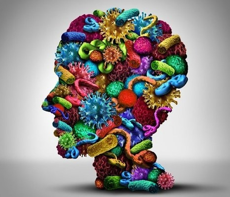Infections and Antibiotic Use Linked to Manic Episodes in People With Serious Mental Illness   PCOS or Polycystic Ovarian Syndrome Awareness   Scoop.it