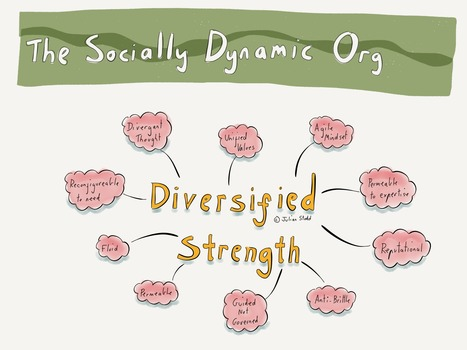 Aspects of the Socially Dynamic Organisation: Diversified Strength | APRENDIZAJE | Scoop.it