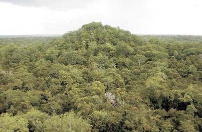Conap denuncia invasión en la Biósfera Maya | Siglo 21 (Guatemala) | Kiosque du monde : Amériques | Scoop.it