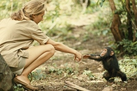 Meet Robert Ballard, James Cameron, Jane Goodall, and Explorers Around the World | Jane Goodall | Scoop.it