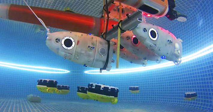 """En travaillant en équipe, ces robots aquatiques novateurs mettent tout en œuvre pour atteindre leur objectif   Argent et Economie """"AutreMent""""   Scoop.it"""