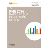 Rapport 2014 sur l'évolution des PME– Observatoire des PME de Bpifrance | Intellectual Property - Personnal Watch | Scoop.it