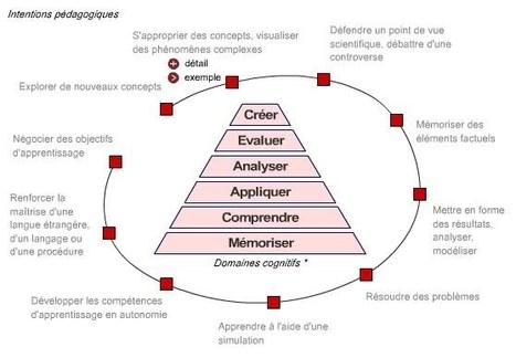 Les domaines cognitifs par l'UNIL - Jacques Rodet | Numérique & pédagogie | Scoop.it