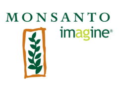 Monsanto exploring deals, including BASF agri unit buy - BBG | Grain du Coteau : News ( corn maize ethanol DDG soybean soymeal wheat livestock beef pigs canadian dollar) | Scoop.it