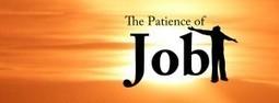 Bài học về sự kiên nhẫn. Đừng quá vì cái lợi trước mắt. | Vung Tau Freelance | Scoop.it