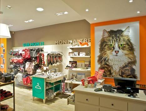 A Paris, un magasin design dédié à nos animaux de compagnie | Nouveaux concepts magasins | Scoop.it