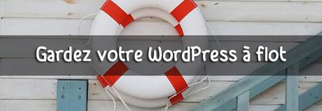 Quel plugin pour sauvegarder WordPress et éviter le désastre | formation reseaux sociaux, internet, logiciels | Scoop.it