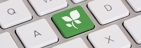 Naviguez vert sur Internet ! | DECLICS | L'expérience consommateurs dans l'efficience énergétique | Scoop.it