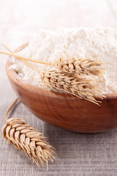Agroalimentaire : pourquoi opter pour une GMAO ?   Actu de la maintenance   Scoop.it